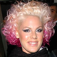 Биография Pink